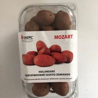 """Holandské sadivo zemiakov """"MOZART"""" červená, stredne skorá, varný typ B"""