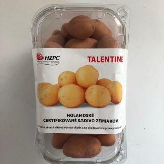 """Holandské sadivo zemiakov """"TALENTINE"""" žltá, stredne skorá, varný typ A, cca 1 kg"""