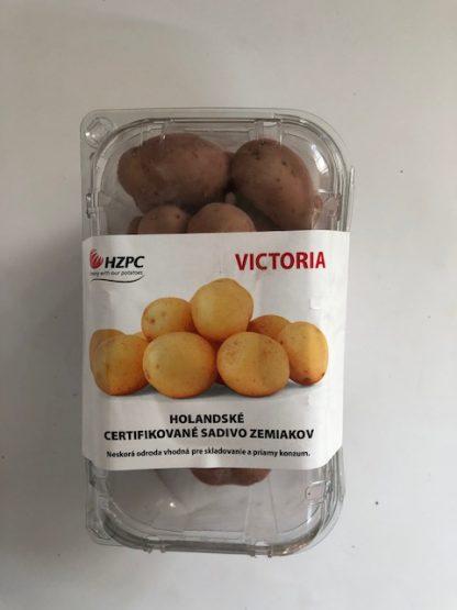"""Holandské sadivo zemiakov """"VICTORIA"""" žltá, stredne skorá, varný typ B, cca 1 kg"""
