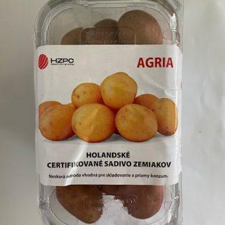"""Holandské sadivo zemiakov """"AGRIA"""" žltá, stredne skorá, varný typ B/BC, cca 1 kg"""