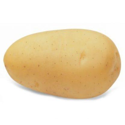 """Holandské sadivo zemiakov """"VIVALDI"""" žltá, skorá, varný typ B, cca 1 kg"""