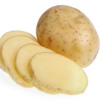 """Sadbové zemiaky žlté skoré """"GALA"""" 5 kg"""