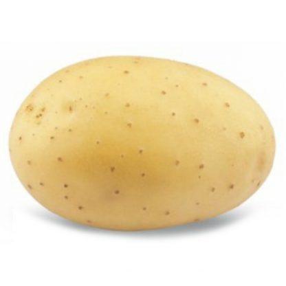 """Holandské sadivo zemiakov """"SUNITA"""" žltá, skorá, varný typ AB, cca 1 kg"""